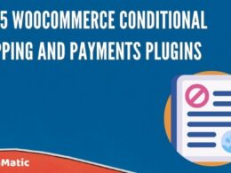 Top 5 WooCommerce Conditional Shipping and Payments Plugins
