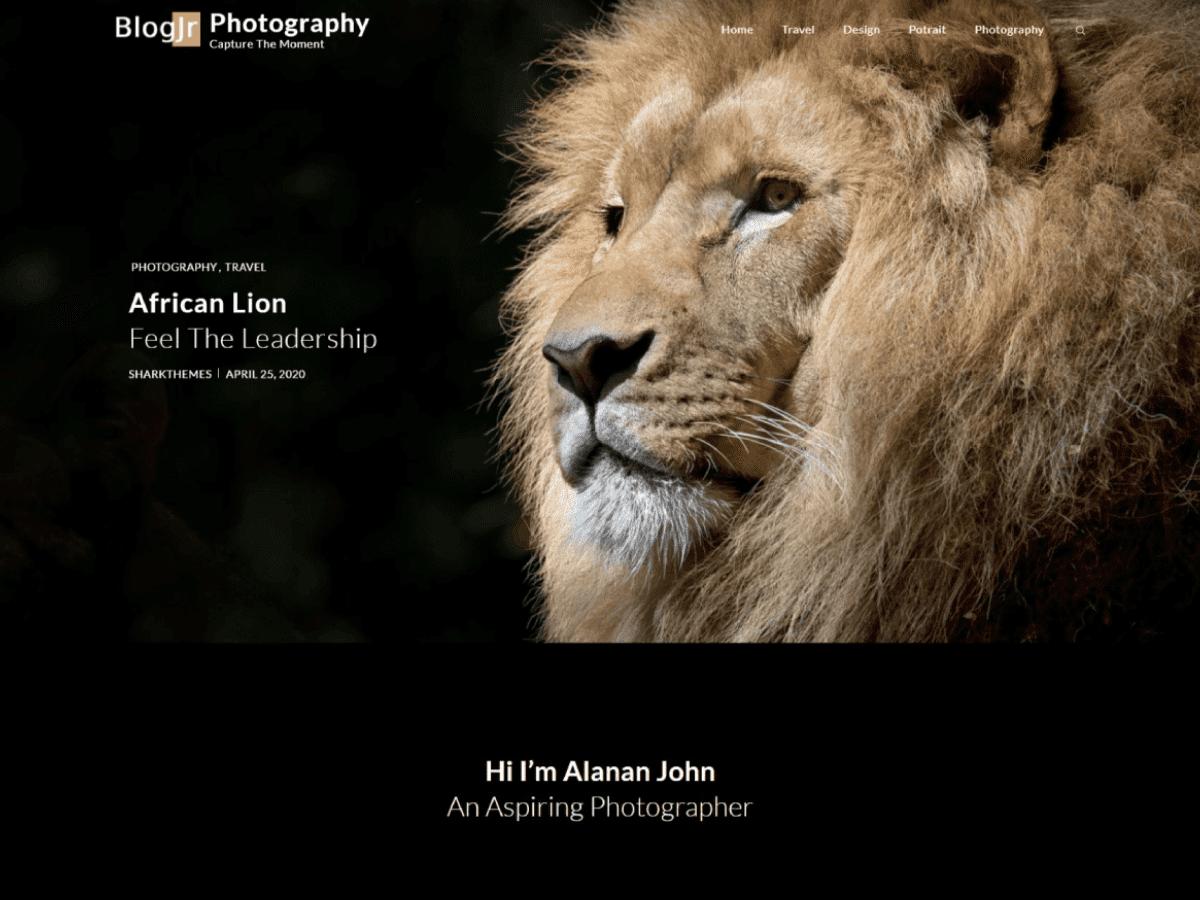 blogjr, WordPress Theme for Photographers