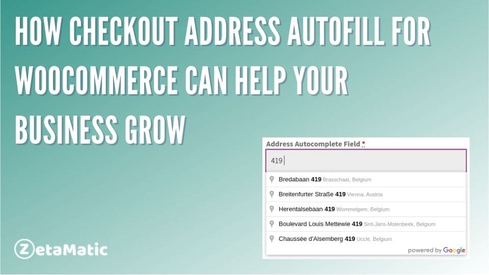 How Checkout Address Autofill for WooCommerce Can Help Your Business Grow
