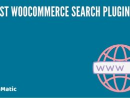 8 Best WooCommerce Search Plugins